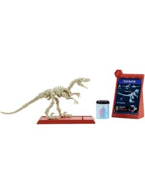 Jurassic World Esqueleto De Dinosaurio Ftf03 Mattel